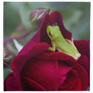 Ranas arbóreas verdes y rosas rojos servilletas imprimidas