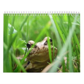 Ranas Calendarios De Pared