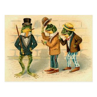 Ranas divertidas del vintage tarjetas postales