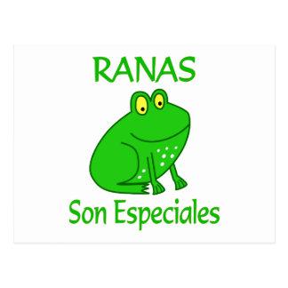 Ranas Son Especiales Postcard