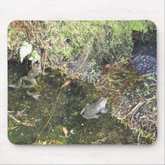 Ranas y freza de la rana en un cojín de ratón de l alfombrilla de raton