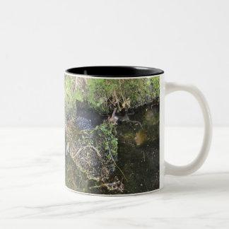 Ranas y freza de la rana en una taza de la charca