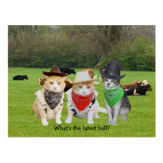 Ranch Hand - Working Cats Postcard