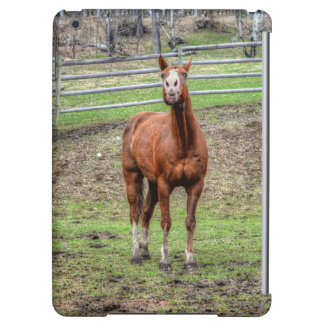 Ranch Horse Theme for Equine-lovers iPad Air Cases