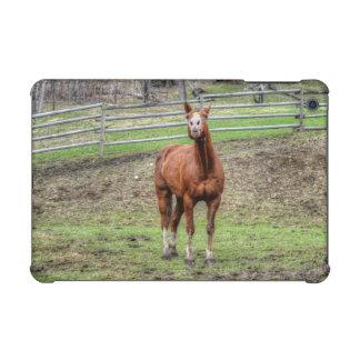 Ranch Horse Theme for Equine-lovers iPad Mini Retina Case