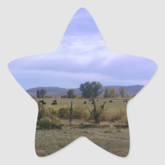 Ranch Life Star Sticker