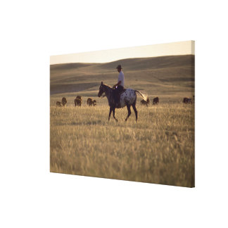 Rancher Buck Holmes riding a horse looking Canvas Print