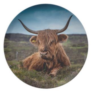 Ranchero escocés de Bull del fonolocalizador de bo Plato