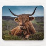 Ranchero escocés de Bull del fonolocalizador de bo Tapete De Ratones