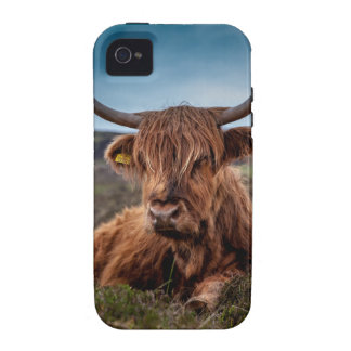 Ranchero escocés de los fonolocalizadores de vibe iPhone 4 carcasas