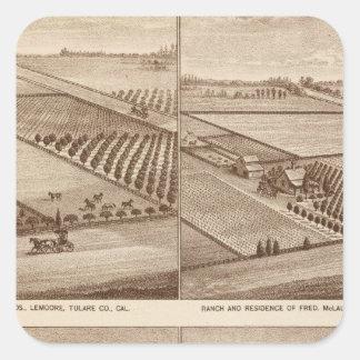 Ranches, Tulare Co, Cal 2 Square Sticker
