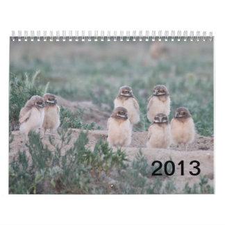 Rancho de 2013 pozos calendario