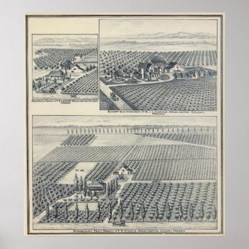 Rancho de Bonacourt, colonia de Washington, Califo Posters