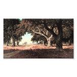 Rancho de California de Guillermo Keith (modificad Fotografias