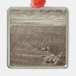 Rancho de la fruta de Chapin Adornos