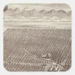 Rancho de la fruta de Chapin Calcomanía Cuadradas