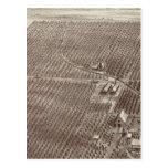 Rancho de la fruta de Chapin Postal