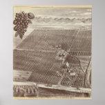 Rancho de la fruta de Chapin Poster