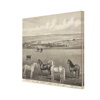 Rancho del Brae del molino, Kansas Impresiones En Lienzo Estiradas