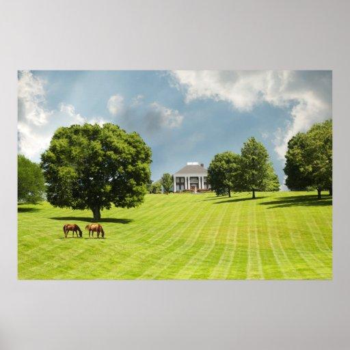Rancho del caballo impresiones