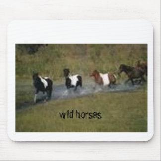 Rancho del caballo (kkincade12) mouse pads