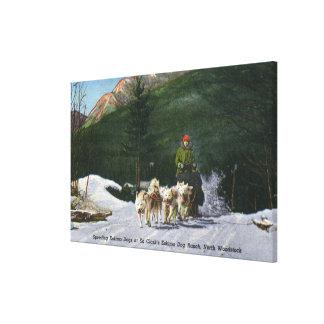 Rancho del perro esquimal de Ed Clark, Dogsledding Impresión De Lienzo