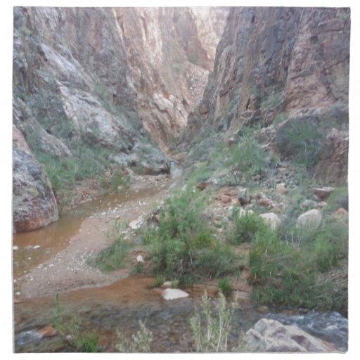 Rancho del sur del fantasma del parque nacional de servilleta