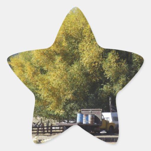 Rancho en caída pegatina en forma de estrella