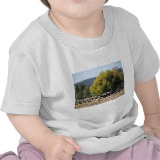 Rancho en caída camisetas
