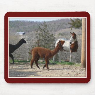 Rancho Mousepad del caballo de la alpaca