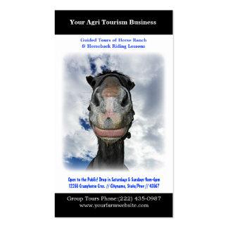 Rancho o cultivo del caballo de equitación tarjetas de negocios