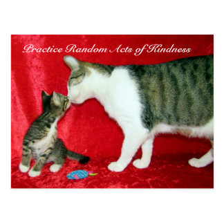 Random Acts of Kindness Postcard - Are You My Dad