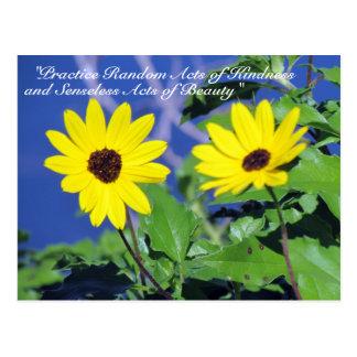 Random Acts of Kindness Postcard- Black Eyed Susan Postcard