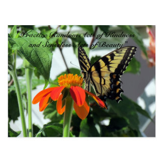 Random Acts of Kindness Postcard - Butterfly