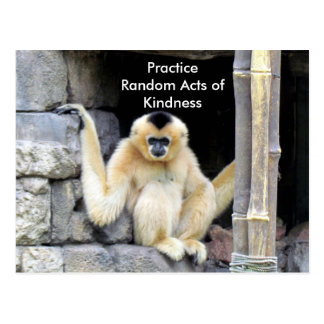 Random Acts of Kindness Postcard (Gibbon)