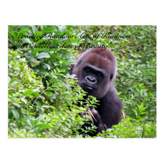 Random Acts of Kindness Postcard - Gorilla Edition