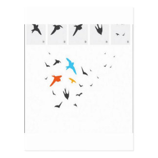 Random birds silhouettes design postcard