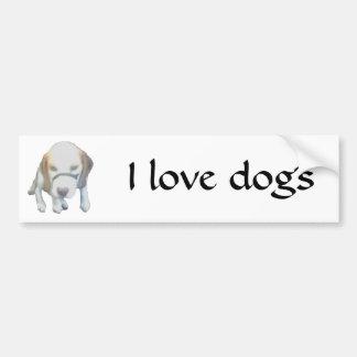 Random Labrador Dog copy, I love labradors Bumper Sticker
