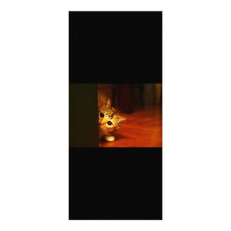 RANDOM OVERVIEW PART TWENTY-THREE ANIMALS RACK CARD