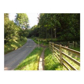 Random road in the Moors Postcard