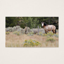 Range horse business card