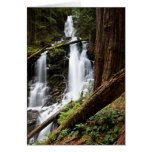 Ranger Falls Cards