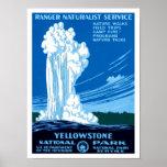 Ranger Naturalist Service ~ Yellowstone Poster