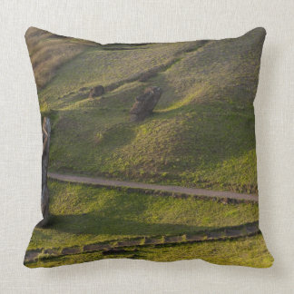 Rano Raraku, Rapa Nui, Easter Island, Chile Throw Pillows