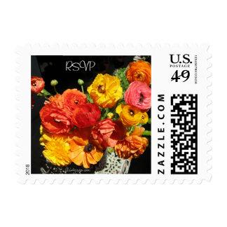 Ranunculas Tropical Colors RSVP Wedding  Stamps