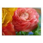 ranúnculo amarillo y rosado tarjeta