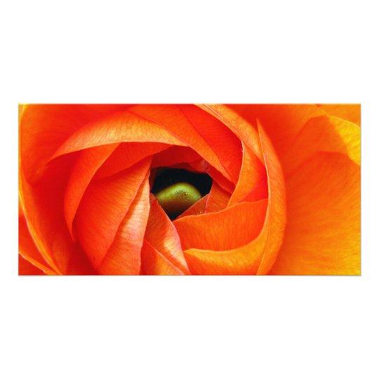 Ranunculus Macro Photocard Card