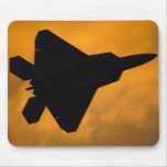 Rapaz F-22 Alfombrilla De Ratones