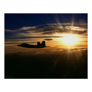 Rapaz F/A-22 Impresiones