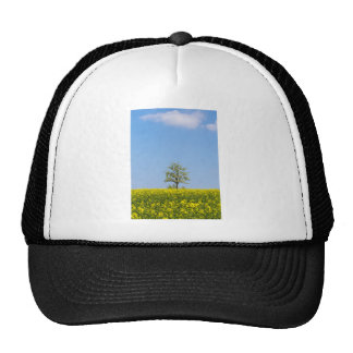 Rapeseed field with apple tree and blue sky trucker hat